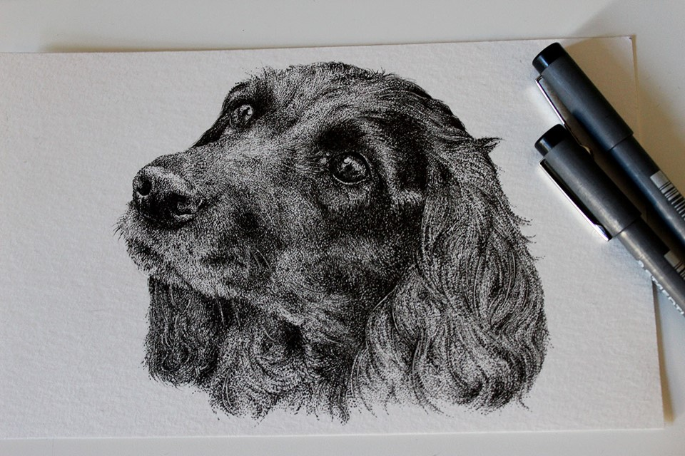 Stippling technique pet portrait by artist Holly Khraibani